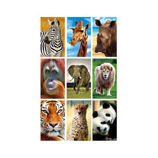 3D dierensticker set