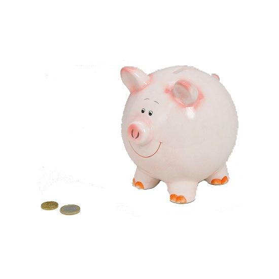 Geld spaarpot varken 16 cm
