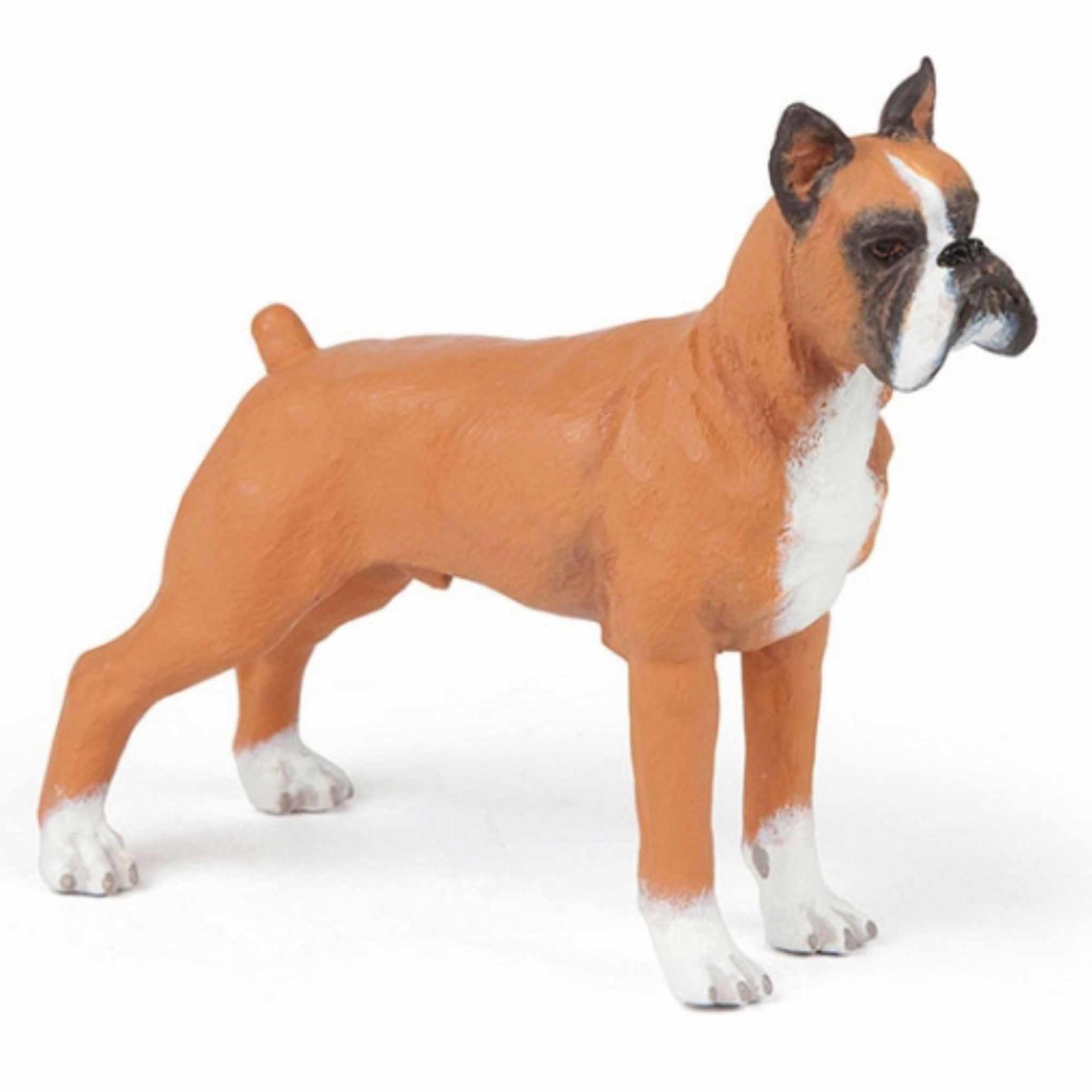 Speeldiertje boxer hond