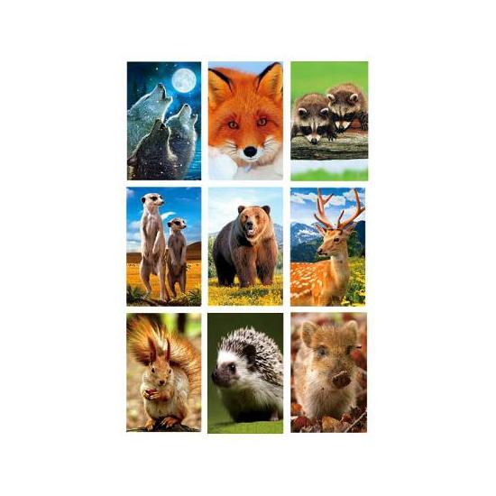 Wilde dieren 3D sticker set