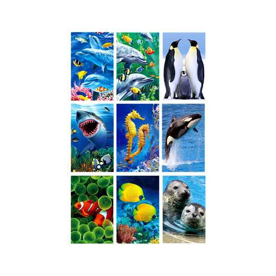Zeedieren stickers 3D