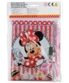 Disney minnie mouse dagboek