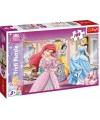 Disney princess puzzel 100 stukjes