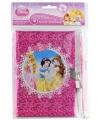 Disney prinsessen dagboek