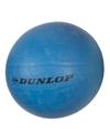 Dunlop volleybal blauw
