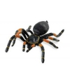Halloween plastic tarantula spin