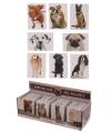 Honden magneet labrador