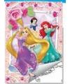 Kleurboek setje prinsessen type 2