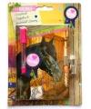 Paarden dagboek met slot