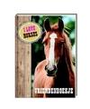 Paarden vriendenboekje