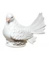 Spaarpot witte duif