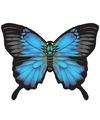 Vlinder vlieger blauw 70 x 48 cm